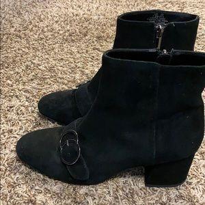 DSW Designer Boots